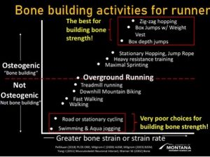 Slide by Rich Willy on exercises for building bone